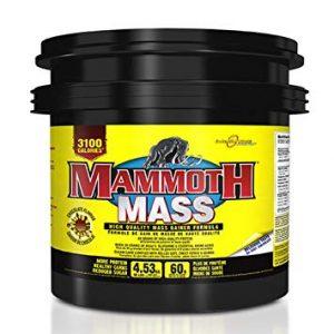Mammoth 10lb